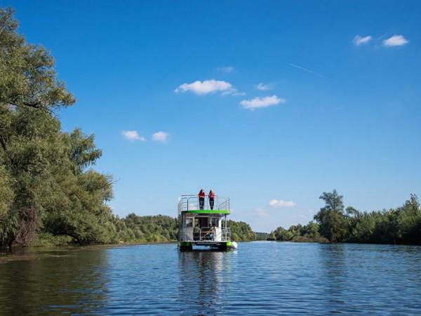 Dunav 8