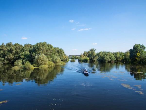 Dunav 9