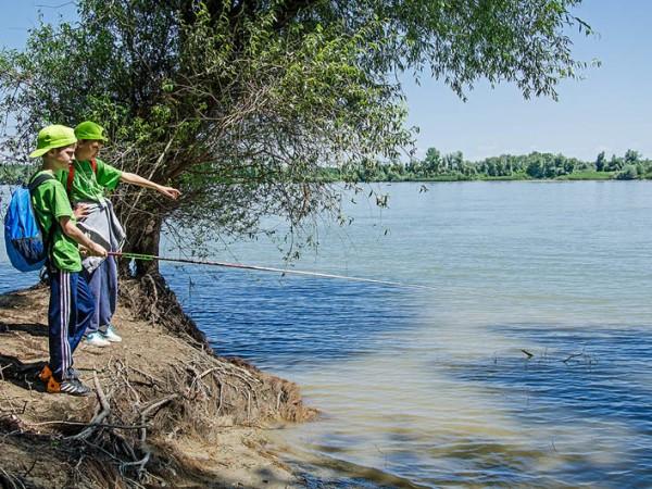 Dunav 14